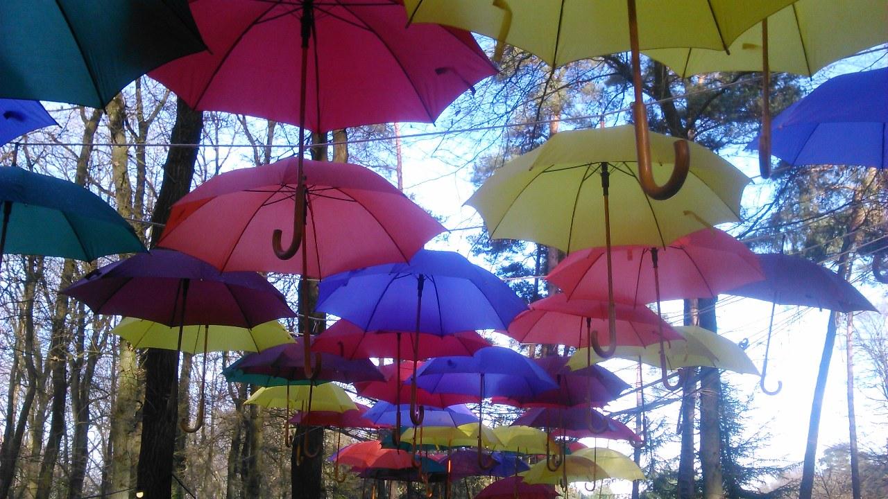 Afbeelding met heel veel kleurige paraplu